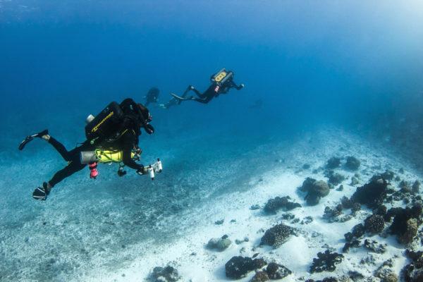 #ccr #rebreather #ccrrangiroa #rangiroa